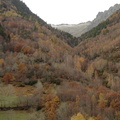 Les couloirs d'avalanche en Vicdessos||<img src=i.php?/upload/2012/08/29/20120829143242-4efe0477-th.jpg>