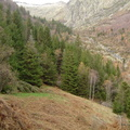 Les couloirs d'avalanche en Vicdessos||<img src=i.php?/upload/2012/08/29/20120829143310-26716070-th.jpg>