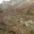 Les couloirs d'avalanche en Vicdessos||<img src=_data/i/upload/2012/08/29/20120829143312-aa4fa39c-th.jpg>