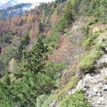 Les couloirs d'avalanche en Vicdessos||<img src=i.php?/upload/2012/08/29/20120829143134-c273ac62-th.jpg>