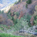 Les couloirs d'avalanche en Vicdessos||<img src=i.php?/upload/2012/08/29/20120829143137-264d1160-th.jpg>