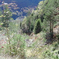Les couloirs d'avalanche en Vicdessos||<img src=_data/i/upload/2012/08/29/20120829143213-a21f3dd4-th.jpg>