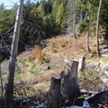Les couloirs d'avalanche en Vicdessos||<img src=i.php?/upload/2012/08/29/20120829143221-a5f52171-th.jpg>