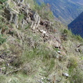 Les couloirs d'avalanche en Vicdessos||<img src=i.php?/upload/2012/08/29/20120829143227-605d47a9-th.jpg>