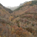 Les couloirs d'avalanche en Vicdessos||<img src=i.php?/upload/2012/08/29/20120829143257-5dd0c551-th.jpg>