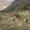 Les couloirs d'avalanche en Vicdessos||<img src=i.php?/upload/2012/08/29/20120829143334-76569703-th.jpg>